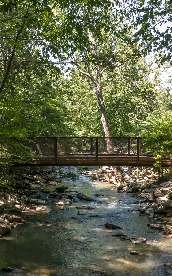 A wooden bridge connects the two banks of Rich Creek