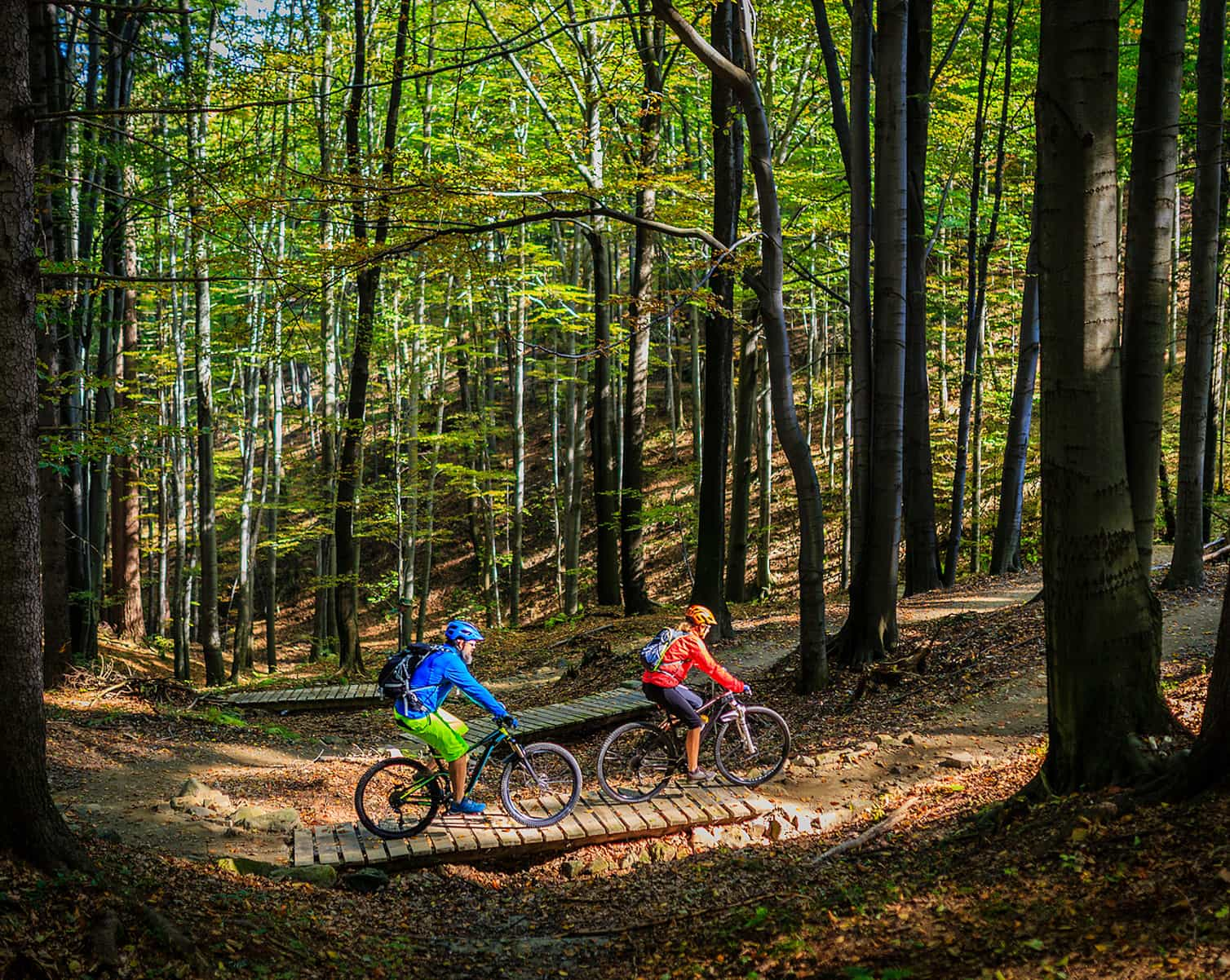 A couple rides mountain bikes on a trail in the woods